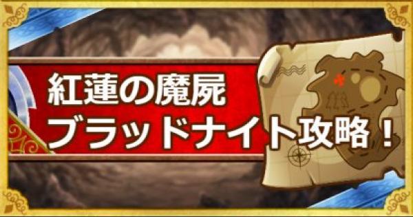 【DQMSL】紅蓮の魔屍(ブラッドナイト)攻略!呪われし魔宮!