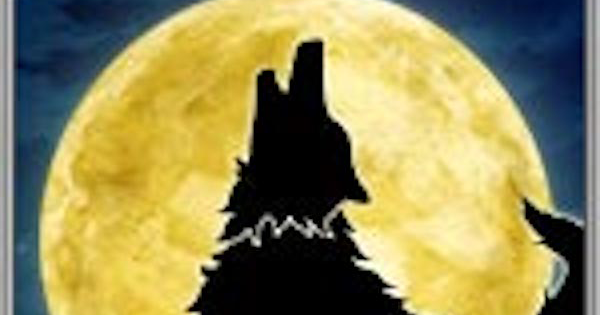 【戦国炎舞】光風霽月の性能 | 奥義【戦国炎舞-KIZNA-】