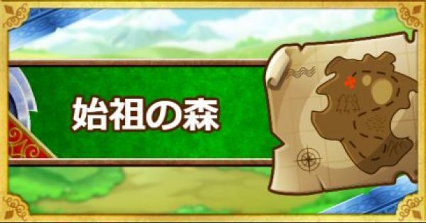 【DQMSL】「始祖の森」攻略!アラウネを仲間にしよう!