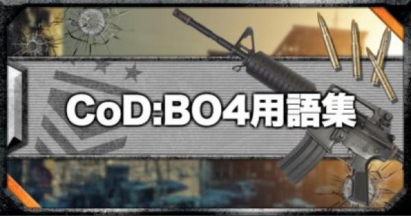 【COD:BO4】CoD:BO4の用語集