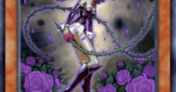 【遊戯王デュエルリンクス】魔天使ローズソーサラーの評価と入手方法