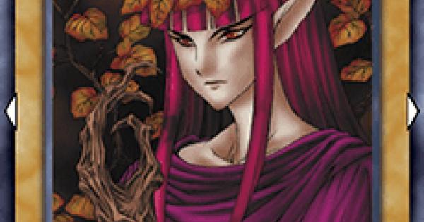 【遊戯王デュエルリンクス】紅葉の女王の評価と入手方法