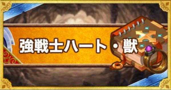 【DQMSL】強戦士ハート・獣(S)の効果と使用感