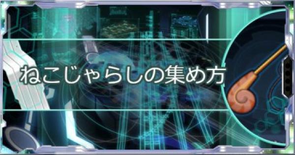 【シンフォギアXD】ねこじゃらしの効率的な集め方! | EP効率