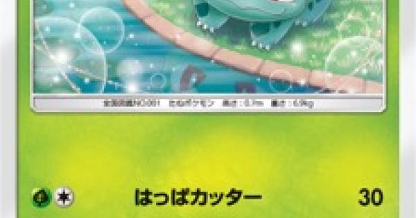 フシギダネ(SM3+)のカード情報