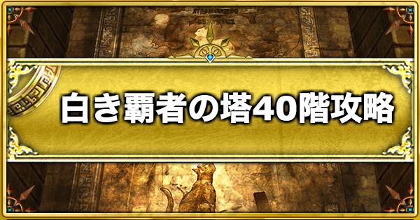 白き覇者の塔【40階】の攻略と適正キャラ