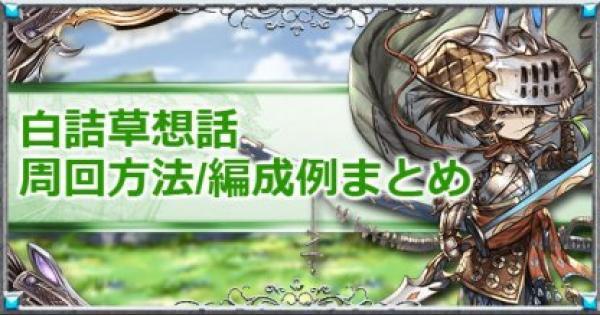 『白詰草想話』戦貨掘り効率周回/編成例│月末シナリオ