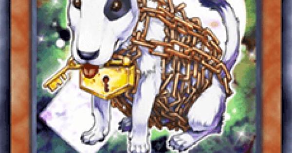 【遊戯王デュエルリンクス】チェーンドッグの評価と入手方法