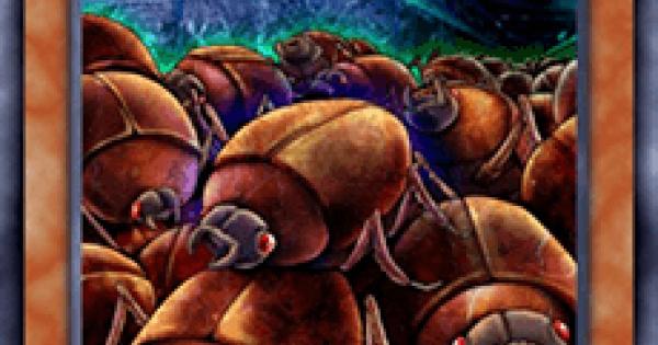 【遊戯王デュエルリンクス】スカラベの大群の評価と入手方法