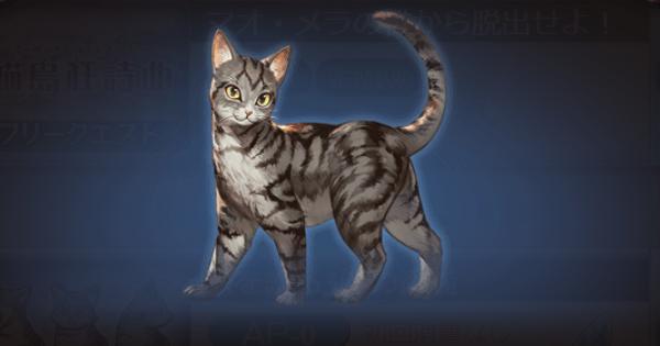 【グラブル】『猫島狂詩曲』チャレンジクエスト攻略【グランブルーファンタジー】