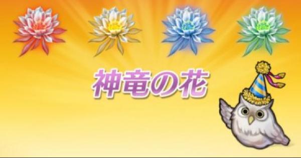神竜の花のオススメの集め方と使い方まとめ