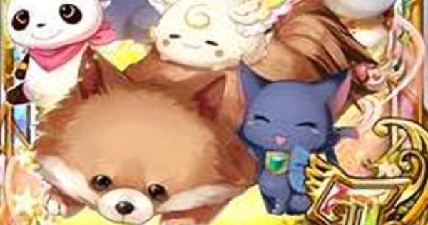 【黒猫のウィズ】コロン(さいかわんこグランプリ)の評価