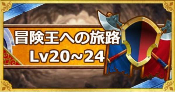 【DQMSL】「冒険王への旅路レベル20・21・22・23・24」攻略!