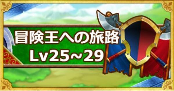 【DQMSL】「冒険王への旅路レベル25・26・27・28・29」攻略!