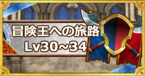【DQMSL】「冒険王への旅路レベル30・31・32・33・34」攻略!