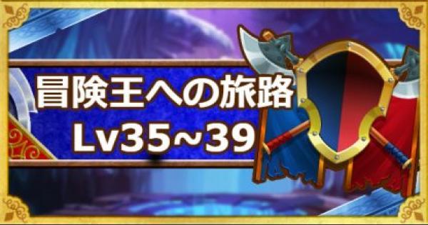 【DQMSL】「冒険王への旅路レベル35・36・37・38・39」攻略!