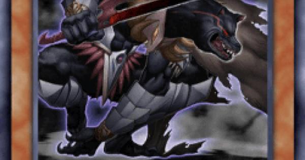 【遊戯王デュエルリンクス】漆黒の戦士ワーウルフの評価と入手方法