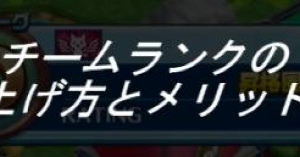 【白猫テニス】チームランクの上げ方と上げるメリット【白テニ】