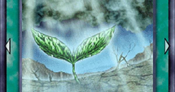 【遊戯王デュエルリンクス】恵みの雨の評価と使い道