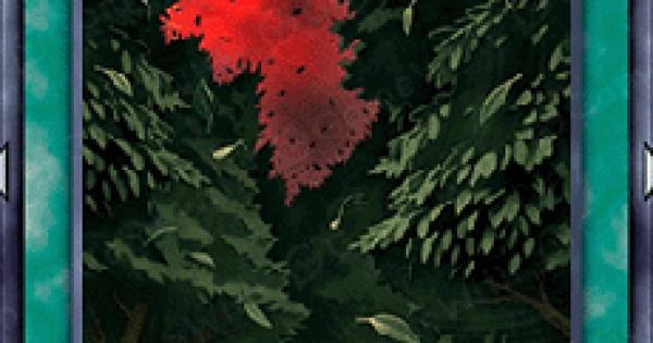 【遊戯王デュエルリンクス】森のざわめきの評価と入手方法