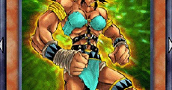 【遊戯王デュエルリンクス】アマゾネスの格闘戦士の評価と入手方法