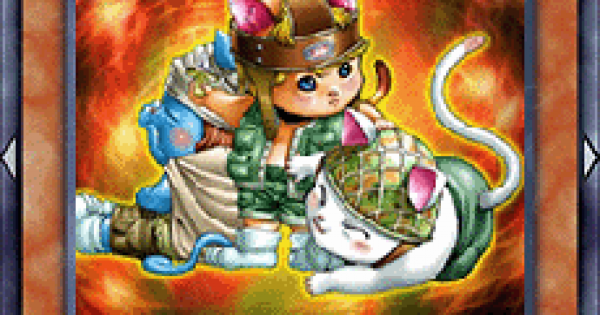 【遊戯王デュエルリンクス】ネコ耳族の評価と入手方法