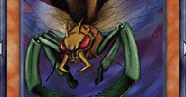 【遊戯王デュエルリンクス】空の昆虫兵の評価と入手方法