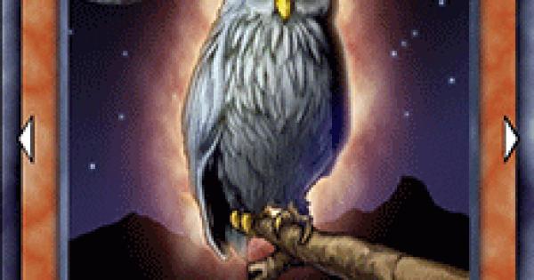 【遊戯王デュエルリンクス】幸運を告げるフクロウの評価と入手方法