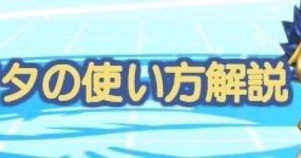 【白猫テニス】アマタの使い方を徹底解説【白テニ】