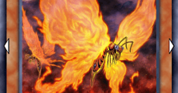 【遊戯王デュエルリンクス】炎妖蝶ウィルプスの評価と入手方法
