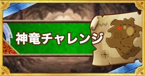 【DQMSL】「神竜チャレンジ」3ラウンド&ウェイト170以下攻略!