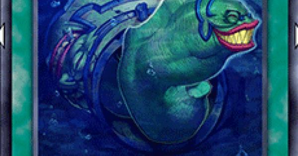 【遊戯王デュエルリンクス】強欲なウツボの評価と入手方法