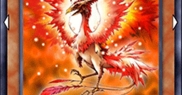 【遊戯王デュエルリンクス】火炎鳥(バーニングバード)の評価と入手方法