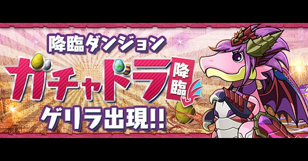 ガチャドラチャレンジの報酬と討伐数【12/17〜12/24】