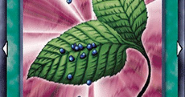 【遊戯王デュエルリンクス】ゴブリンの秘薬の評価と入手方法