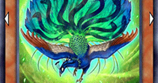 【遊戯王デュエルリンクス】九蛇孔雀の評価と入手方法