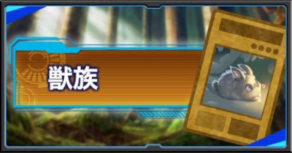 【遊戯王デュエルリンクス】獣族モンスター一覧