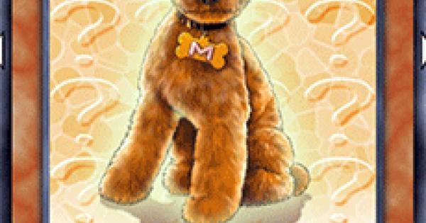 【遊戯王デュエルリンクス】迷犬マロンの評価と入手方法