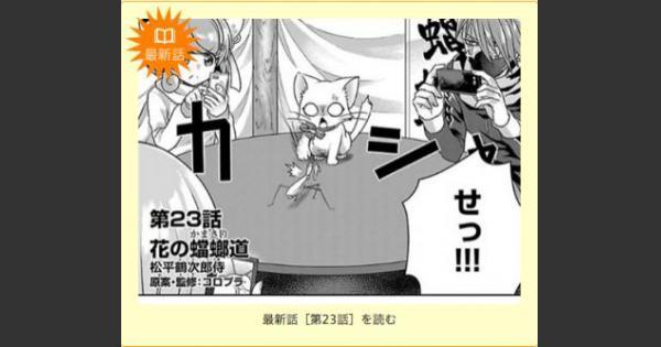 【白猫】昆虫忍者たちが登場!ひこうじま公園23、24話更新!