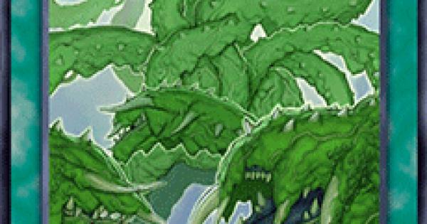 【遊戯王デュエルリンクス】狂植物の氾濫の評価と入手方法