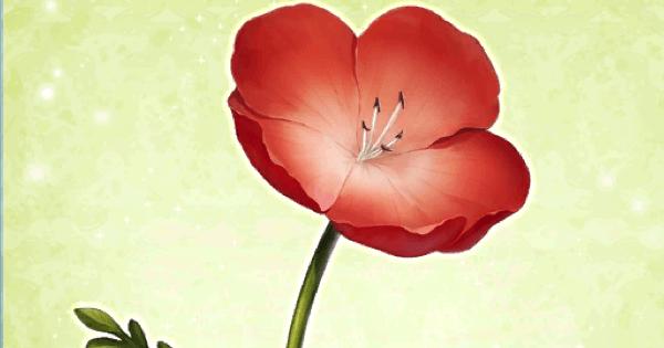 【FGO】『赤い花』の性能