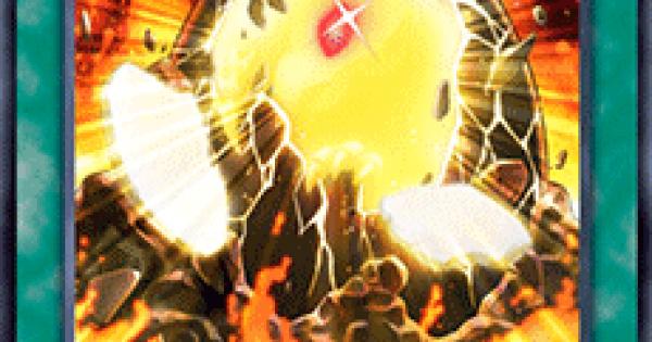 【遊戯王デュエルリンクス】紅玉の宝札の評価と入手方法