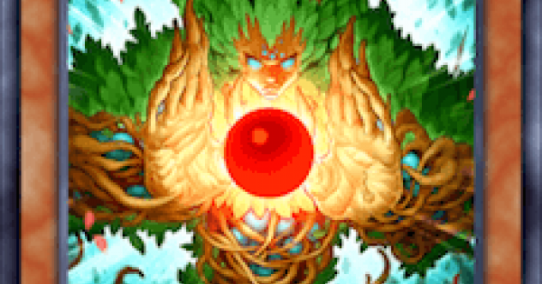 【遊戯王デュエルリンクス】森の聖霊エーコの評価と入手方法