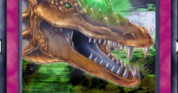 【遊戯王デュエルリンクス】ドラゴンの宝珠の評価と入手方法