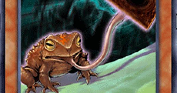 【遊戯王デュエルリンクス】引きガエルの評価と入手方法