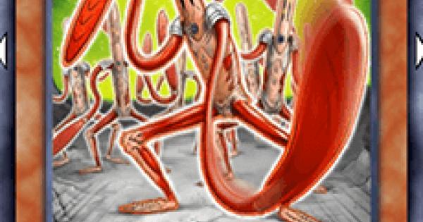 【遊戯王デュエルリンクス】ワームアポカリプスの評価と入手方法