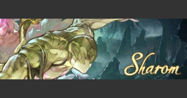 シャローム/魔王の鎧攻略(シナリオボス)