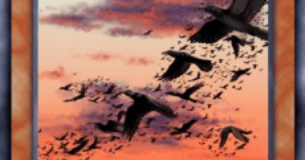 【遊戯王デュエルリンクス】カラスの巨群の評価と入手方法