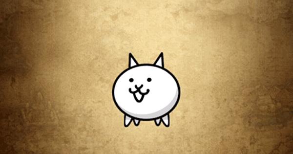 【ポコダン】ネコの評価と強い点【ポコロンダンジョンズ】