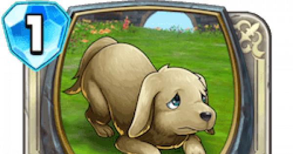 【ドラクエライバルズ】犬の情報【ライバルズ】